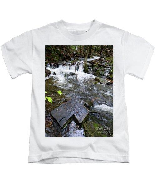Cascade Falls Stream, Farmington, Maine  -30329 Kids T-Shirt