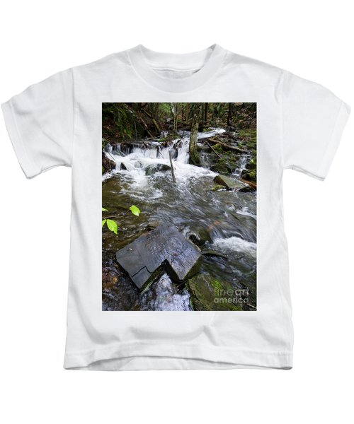 Cascade Falls Stream, Farmington, Maine  -30329 Kids T-Shirt