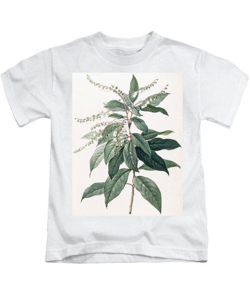 Clethra Arborea Kids T-Shirt