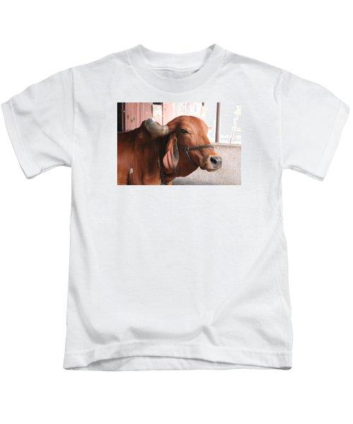 Close Up Of Bull, Satara Kids T-Shirt