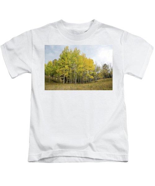 Colorado Aspens In Autumn Kids T-Shirt