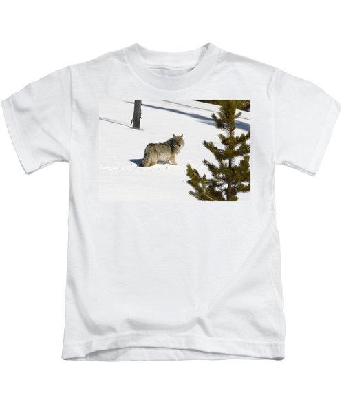 Coyote In Winter Kids T-Shirt