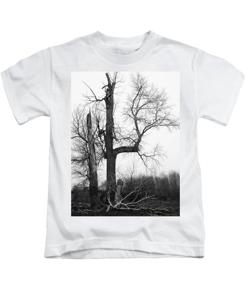 Dead Tree Ten Mile Creek Kids T-Shirt
