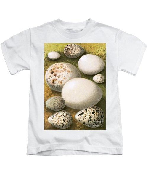 Eggs Kids T-Shirt