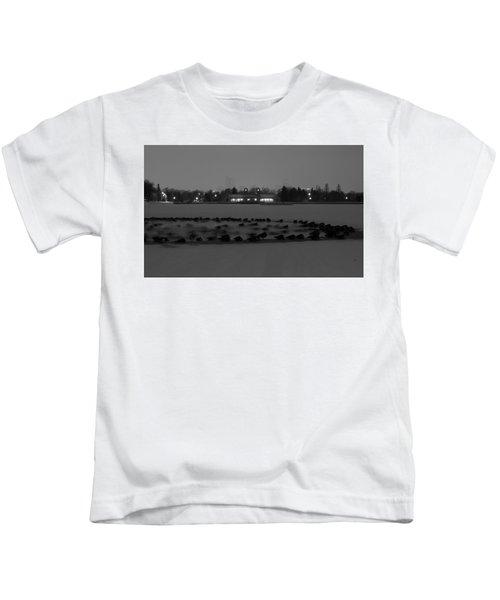 Geese In Frozen Lake Kids T-Shirt