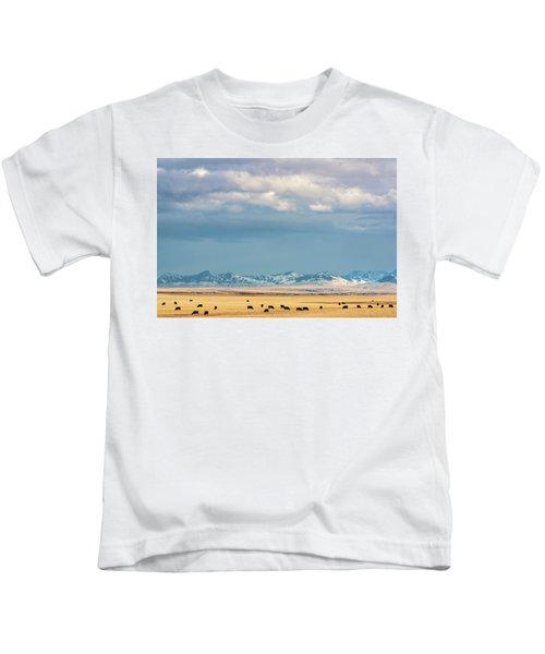 Grazing Near Highwood Kids T-Shirt