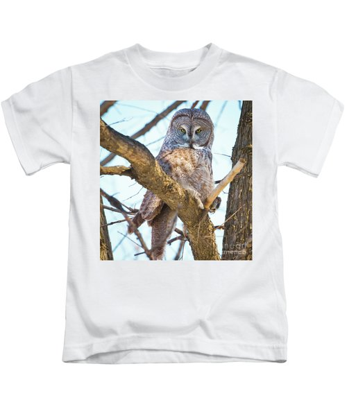 Great Gray Owl Kids T-Shirt