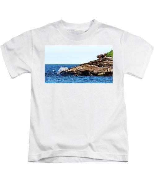 Herring Gull Picnic Kids T-Shirt