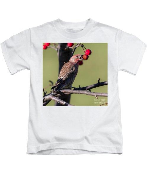 House Finch Vs Crabapple  Kids T-Shirt