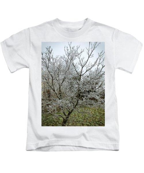 Ice Storm Kids T-Shirt