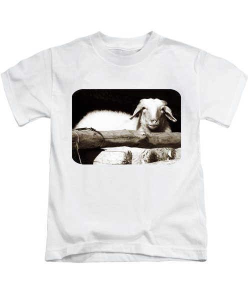 In The Pen Kids T-Shirt by Ethna Gillespie