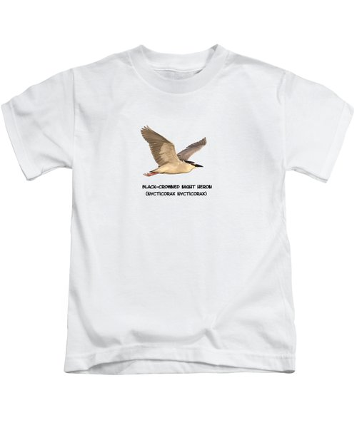 Isolated Black-crowned Night Heron 2017-6 Kids T-Shirt by Thomas Young