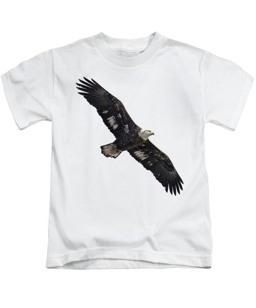 Isolated Juvenile American Bald Eagle 2016-1 Kids T-Shirt