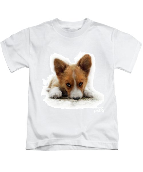 It Wasn't Me Corgi Kids T-Shirt