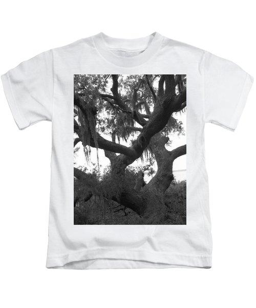 Lands End Talking Tree Kids T-Shirt