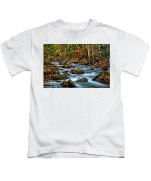 Laurel Fork In The Fall Kids T-Shirt