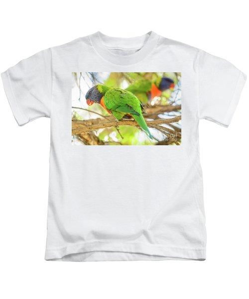Lorrikeets 02 Kids T-Shirt