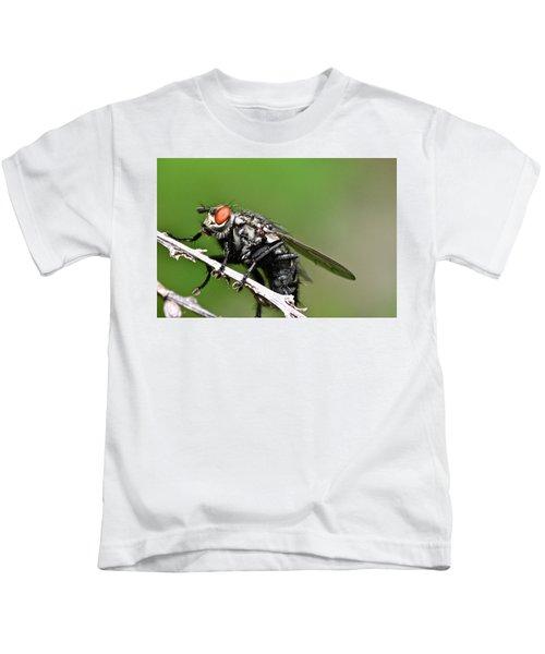 Macro Fly Kids T-Shirt