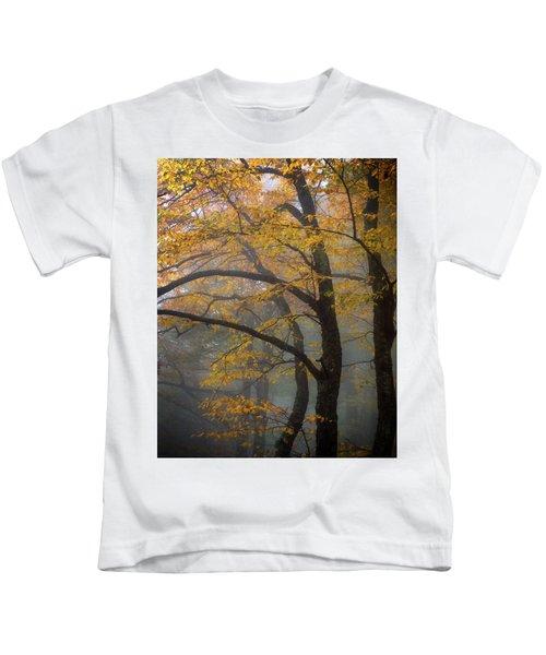 Magical Forest Blue Ridge Parkway Kids T-Shirt