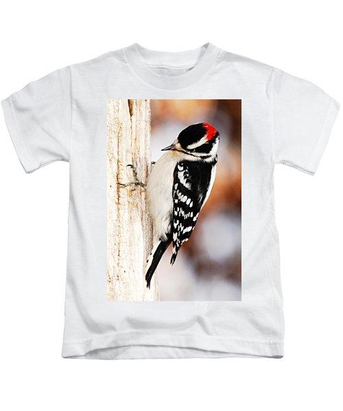Male Downy Woodpecker 3 Kids T-Shirt