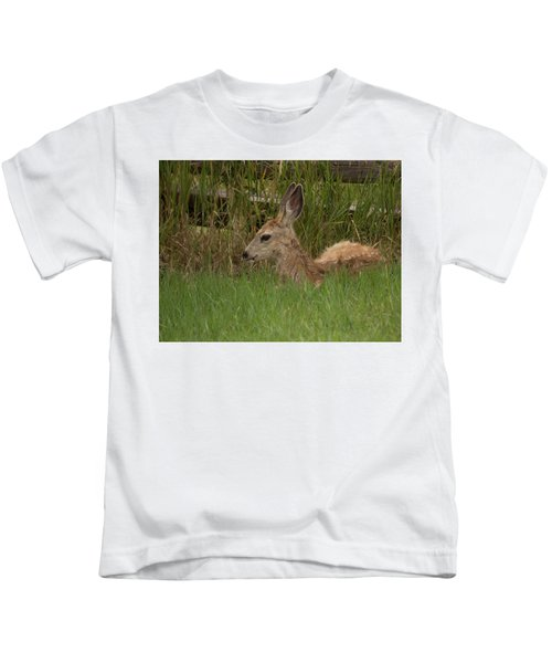 Muledeerfawn1 Kids T-Shirt