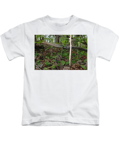 New Life In The Undergrowth Of The Forest Kids T-Shirt