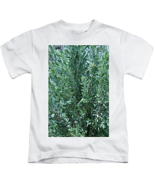 New Sage Kids T-Shirt