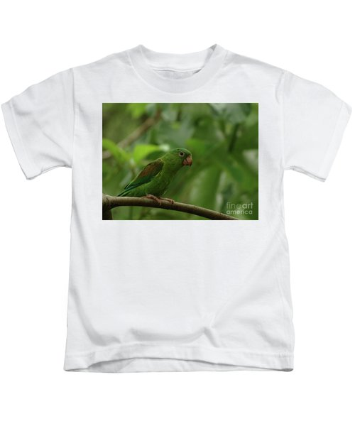 Orange-chinned Parakeet  Kids T-Shirt