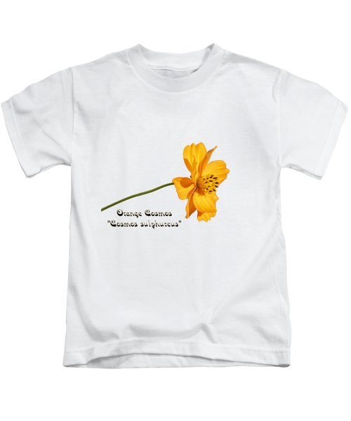Orange Cosmos Isolated 2018-1 Kids T-Shirt