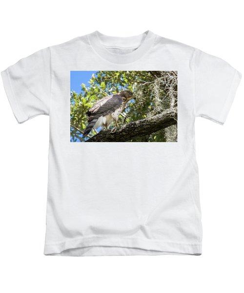 Red-shouldered Hawk Fledgling - 4 Kids T-Shirt
