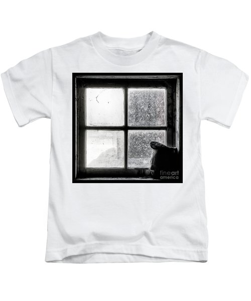 Pitcher In The Window Kids T-Shirt