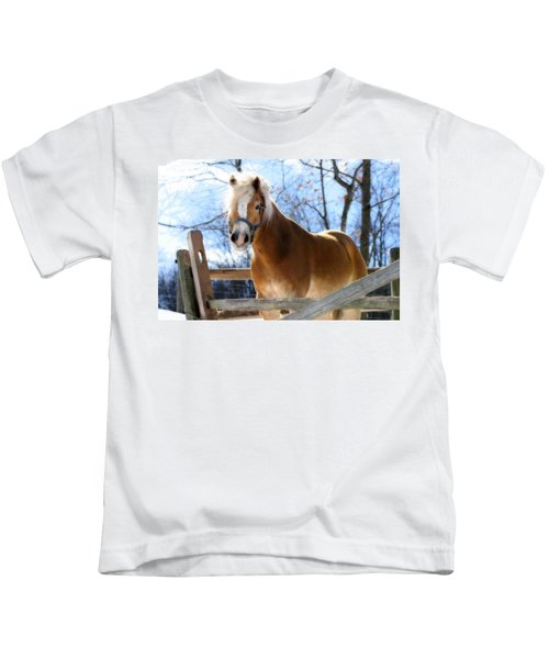 Portrait Of A Haflinger - Niko In Winter Kids T-Shirt