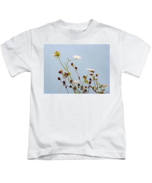 Queen Anne's Lace And Dried Clovers Kids T-Shirt
