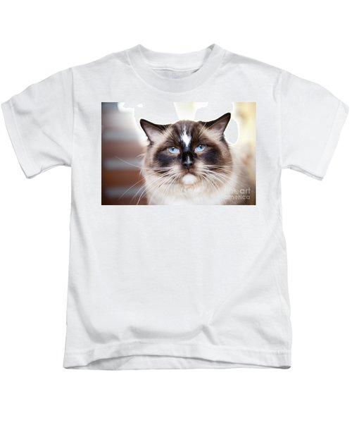 Ragdoll Cat With Blue Eyes Kids T-Shirt