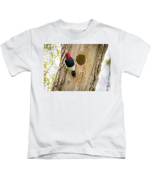 Red-headed Woodpecker At Home Kids T-Shirt