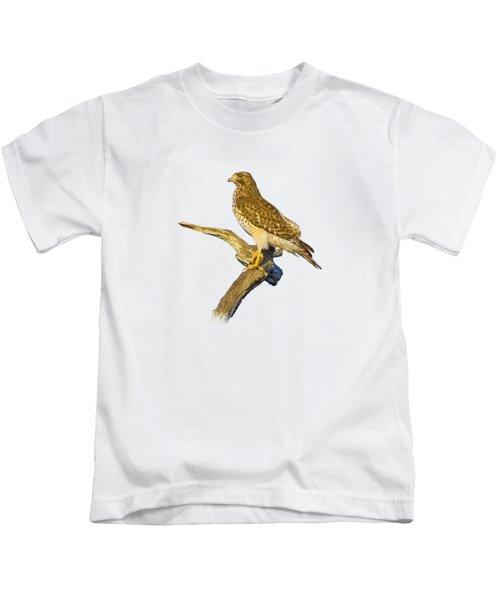 Red Shouldered Hawk Perch Kids T-Shirt