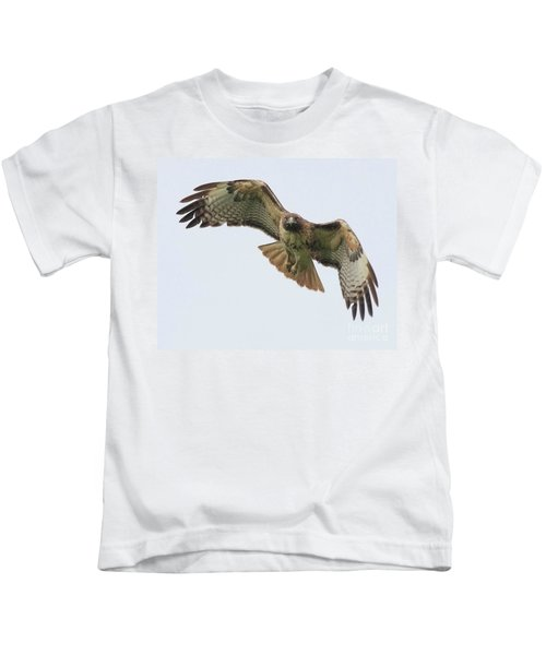 Red Tailed Hawk Finds Its Prey Kids T-Shirt