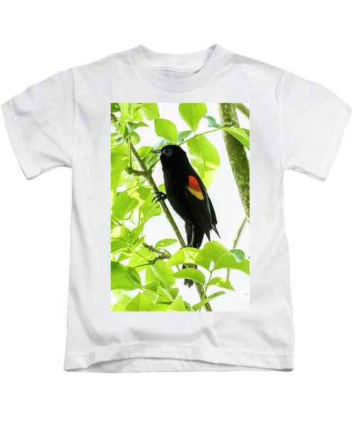 Red-winged Blackbird Kids T-Shirt