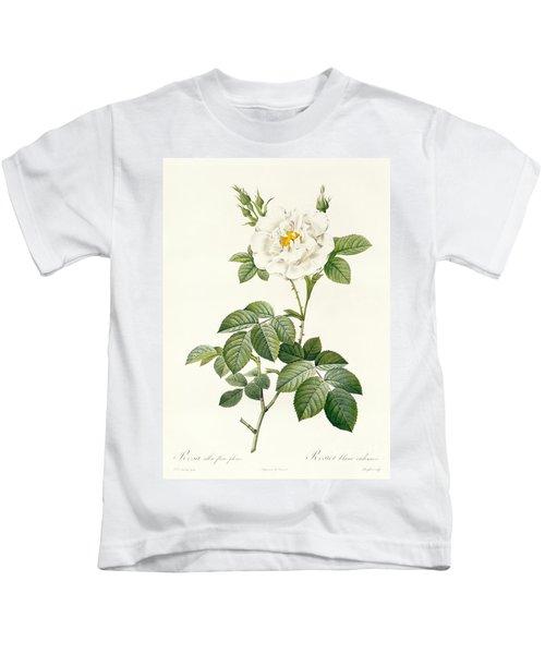 Rosa Alba Flore Pleno Kids T-Shirt