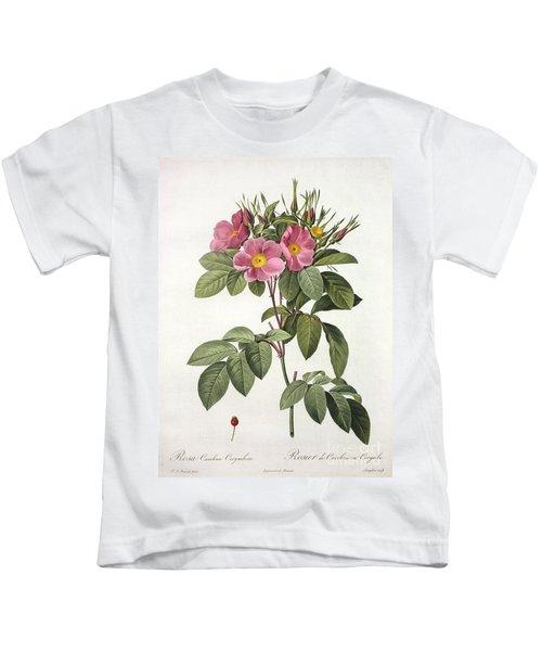 Rosa Carolina Corymbosa Kids T-Shirt