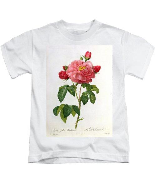 Rosa Gallica Aurelianensis Kids T-Shirt