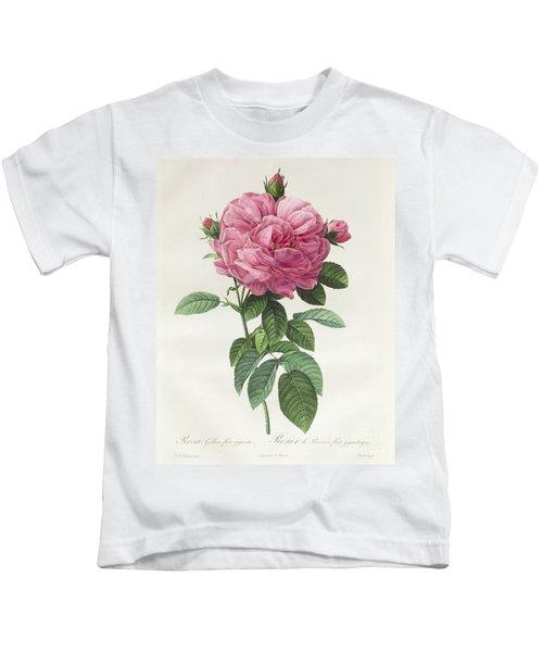 Rosa Gallica Flore Giganteo Kids T-Shirt