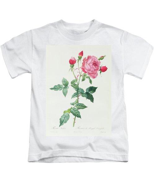 Rosa Indica Kids T-Shirt