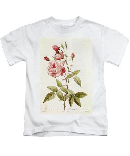 Rosa Indica Vulgaris Kids T-Shirt