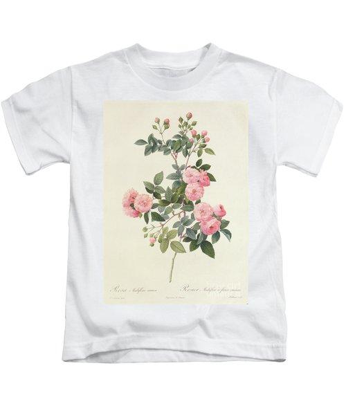 Rosa Multiflora Carnea Kids T-Shirt