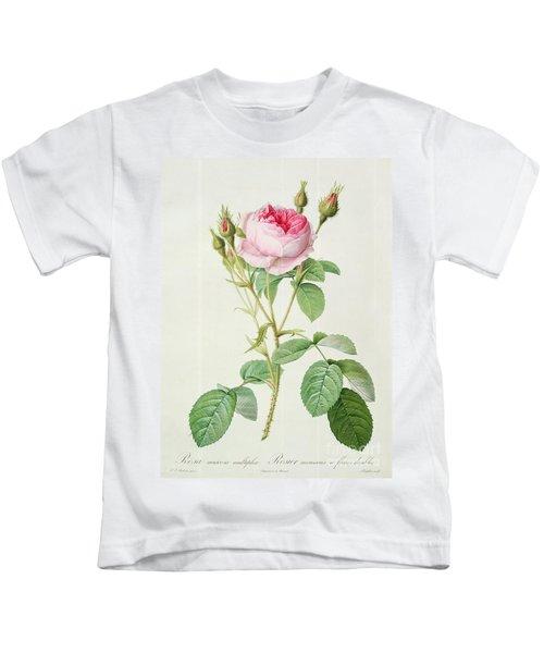 Rosa Muscosa Multiplex Kids T-Shirt