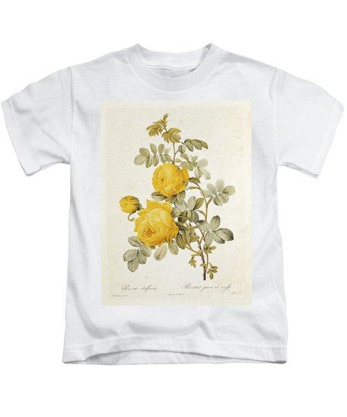 Rosa Sulfurea Kids T-Shirt