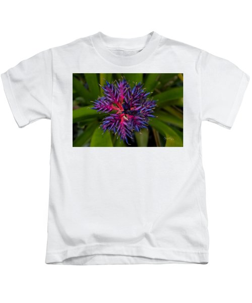 Kids T-Shirt featuring the photograph Selby Stars 5 by Susan Molnar