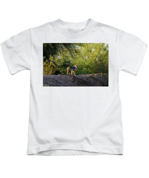 Sleepy Coyote Kids T-Shirt