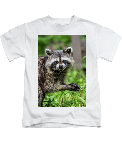 Smiling Raccoon Kids T-Shirt by Paul Freidlund